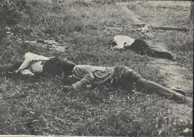 Image result for zimbabwe war atrocities murdered missionaries
